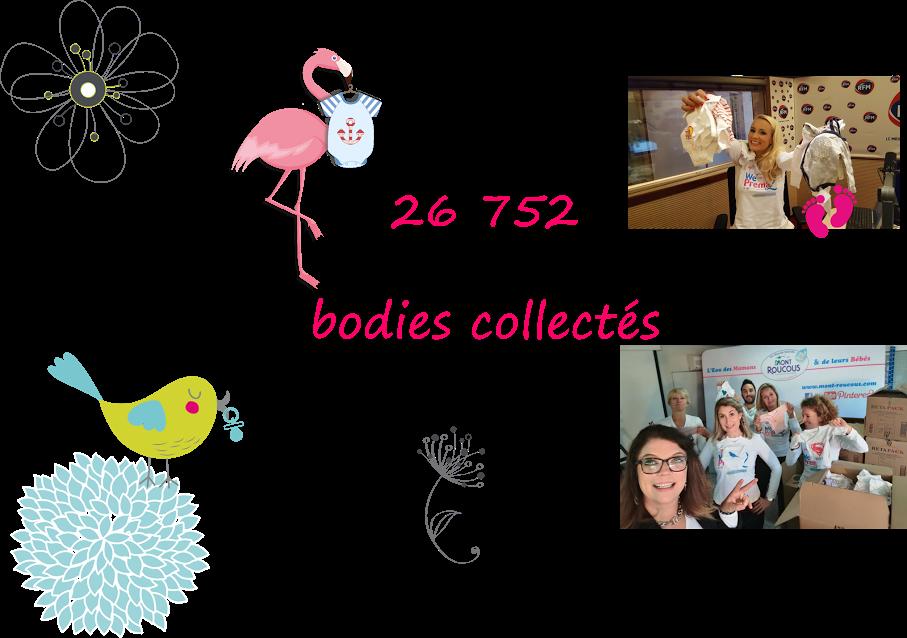 nombre-de-bodies-collectes-en-france-pour-we-love-prema-2