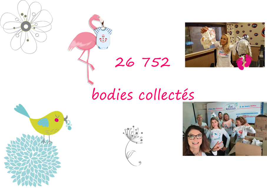 nombre-de-bodies-collectes-en-france-pour-we-love-prema-2