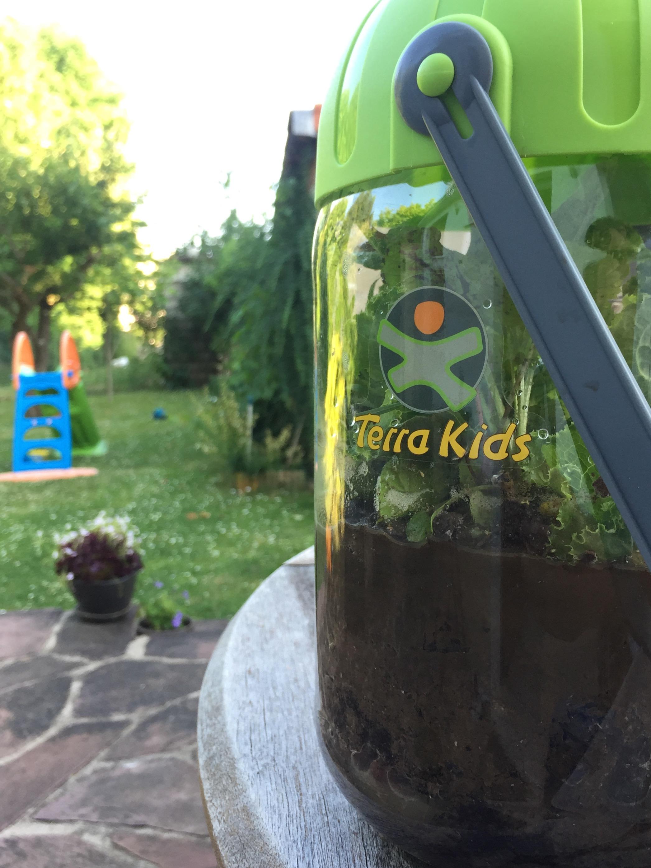 terra kids haba